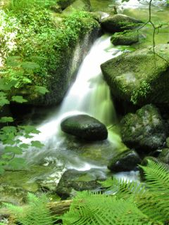 long exposure summer photography nature stream