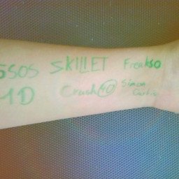 1 direction 5 seconds of summer crush 40 skillet simon curtis