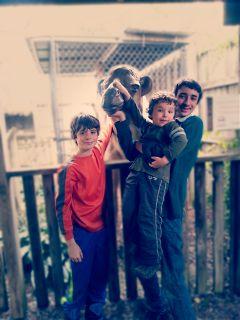 wap3 emotions photography love myfamily