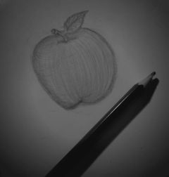 blackandwhite cute pencilart winter fruit