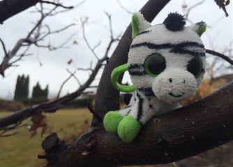 unedited zebra toy tree nature