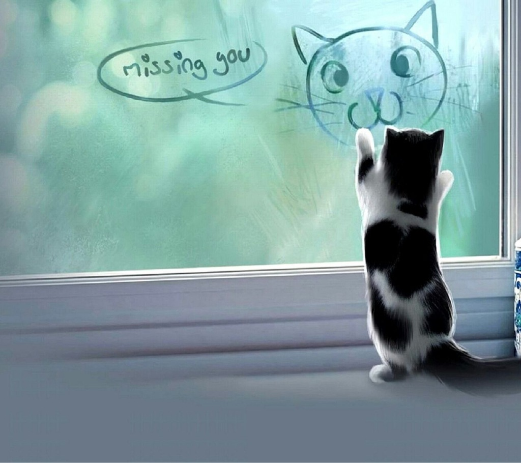 Картинки девушка, картинки животных с надписями я скучаю по тебе